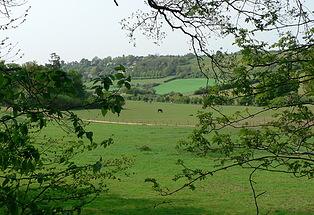 NorthDowns