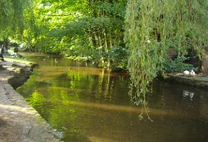 RiverWey01